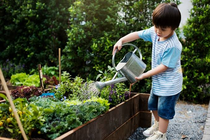 3 Tips For Teaching Your Kids About Gardening