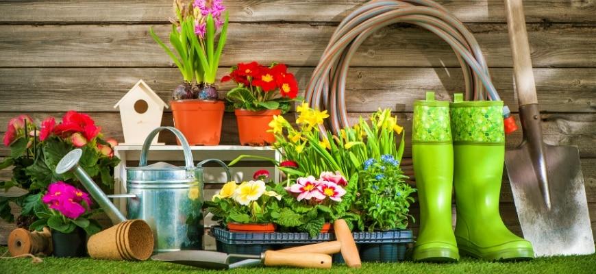 5 Benefits Of Growing Your Own Garden